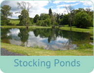 Stocking-Ponds3